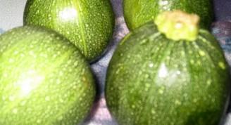 Calabacines rellenos1
