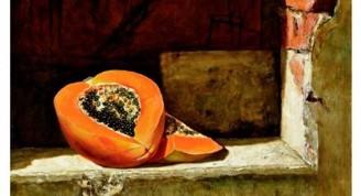 Estudio con papaya, 2013  óleo sobre lienzo   60x60 cm