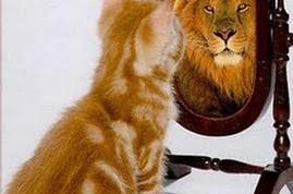 autoconocimiento - Gato y Leon