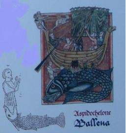 2014-11-28 13-11-18_21  Bestiarios medievales y otros Nov  14 - Microsoft Word