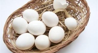mito-el-huevo-aumenta-el-colesterol-L-VZLdUV (Small)
