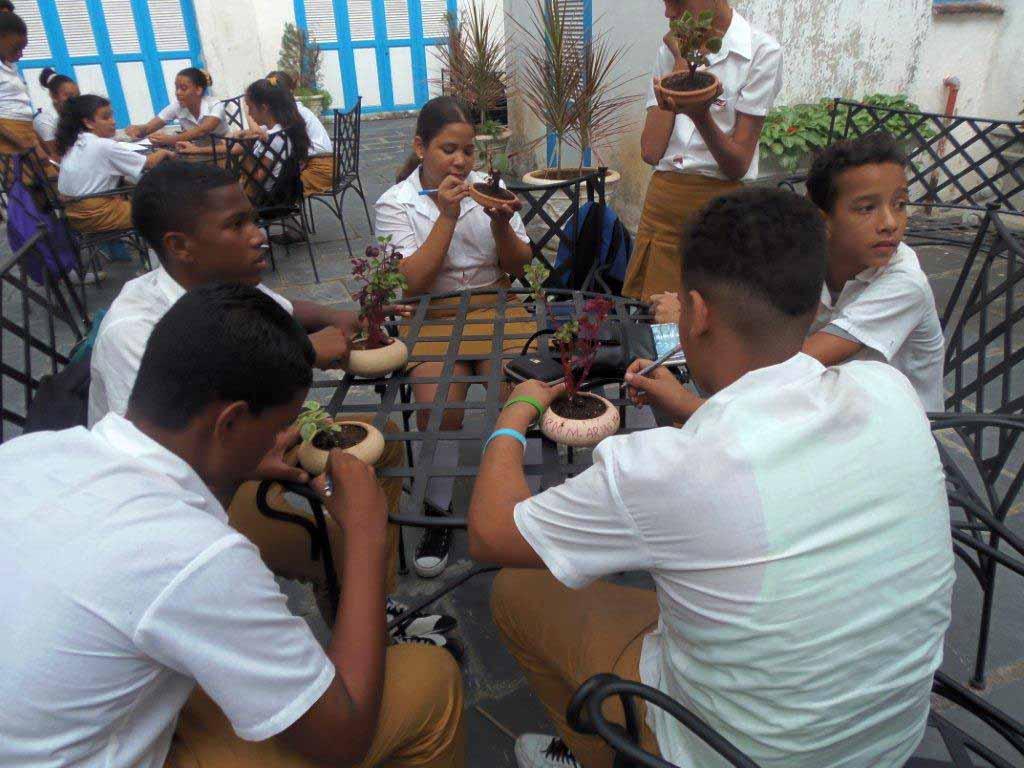 Creación conjunta entre los miembros de los talleres de Cerámica y Jardinería