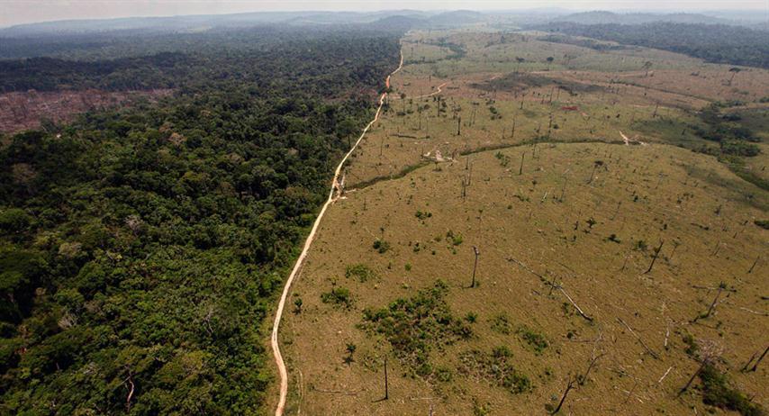 Aumenta-deforestacion-amazonia-5 (Small)