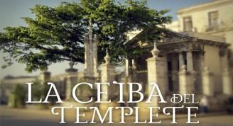 Banner-CEIBA-2016-328x178