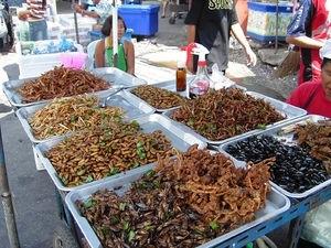 Tema 50. Puesto de venta de insectos comestibles. Tailandia.
