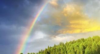 El-espectro-visible-de-luz-4