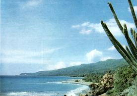 Terrazas marinas como una escalinata natural