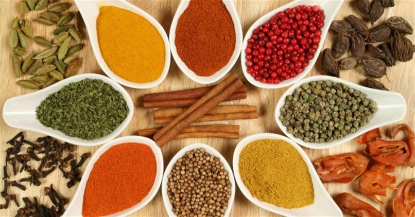 spices_herbs_india_curry (Small)
