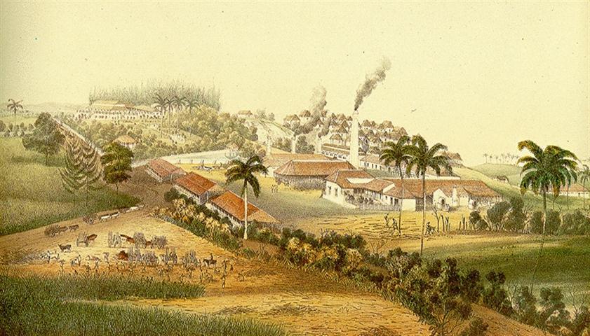 cuban-mills (Small)
