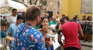 Un grupo de veterinarios realiza la Desparasitación Masiva de mascotas en el Centro Histórico de La Habana, febrero 2017