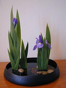 Tema 123. Otro arreglo floral de Ikebana