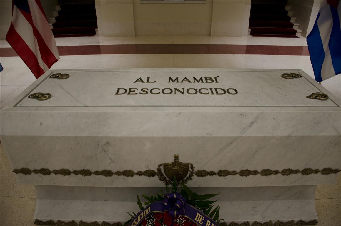 CRIPTA AL MAMBÍ DESCONOCIDO 4 (Medium)