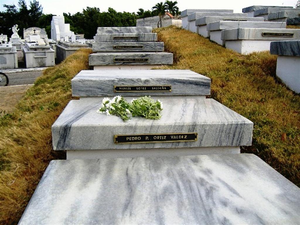 Memorial 13 de Marzo, Cementerio de Colón (5) (Medium)