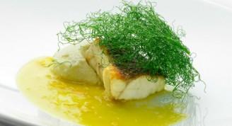 filete-pescado-hinojo-receta-menu-universal
