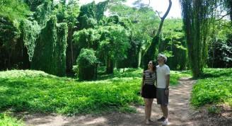 En el bosque de La Habana