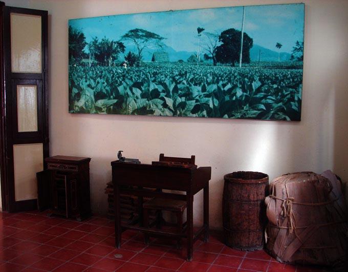 interior-Museo-del-Tabaco