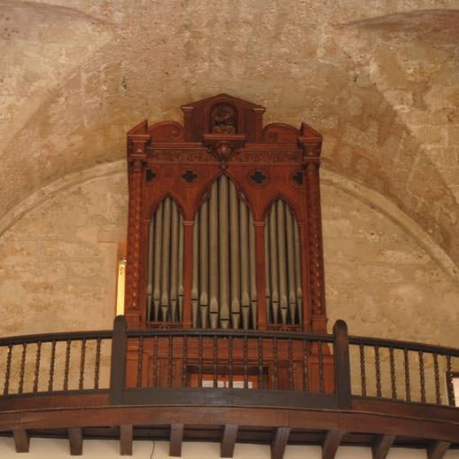 organo de paula