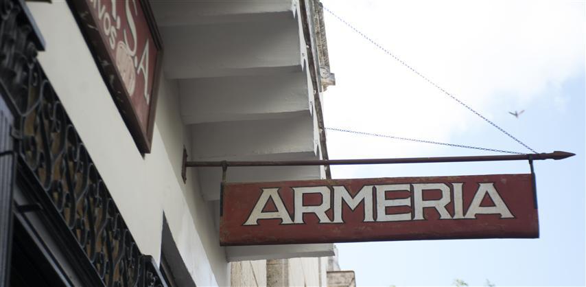 armeria (Small)
