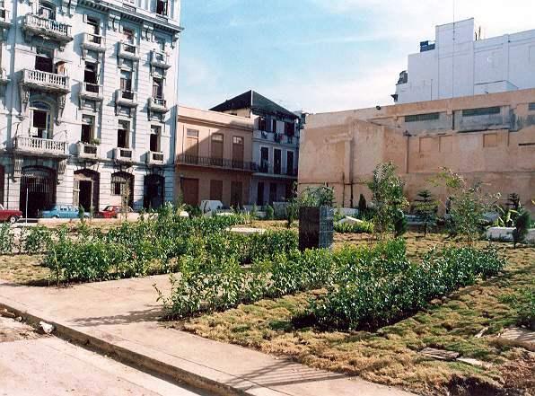 Refuncionalización dela parcela de Cuba y Amargura