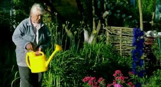 depositphotos_162531360-stock-video-elderly-woman-in-garden-watering
