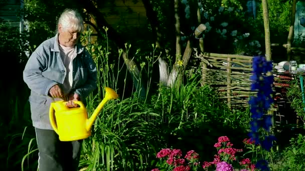 depositphotos_162531360-stock-video-elderly-woman-in-garden-watering
