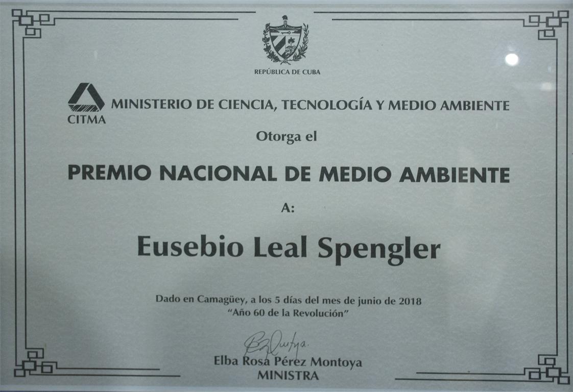 premio medio ambiente 3 (Medium)