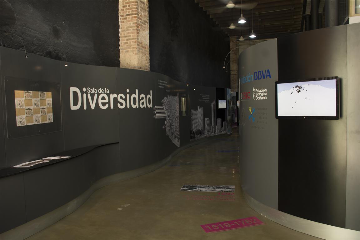 expo arquitectura sala diver 0 (Medium)