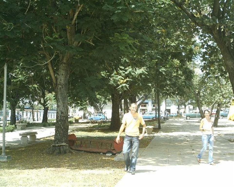 El parque antes de la rehabilitación